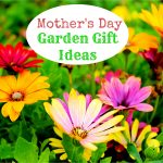 Mother's Day Garden Gift Ideas
