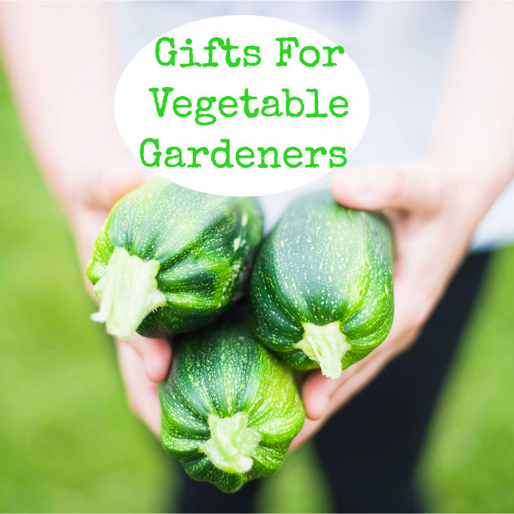 Mothers Day Garden Gift Ideas The Greatest Gift Guide
